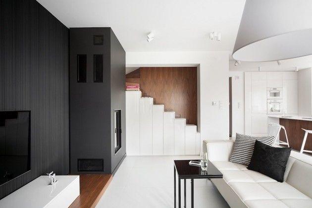 Monochromatic Minimalist Residences