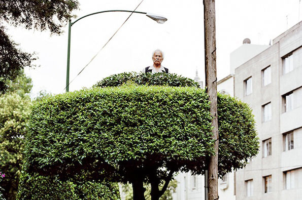 Tree-Perched People Portraits