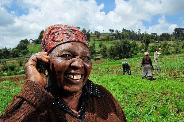 SMS Farming Services