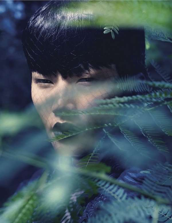 Seductive Forest Editorials