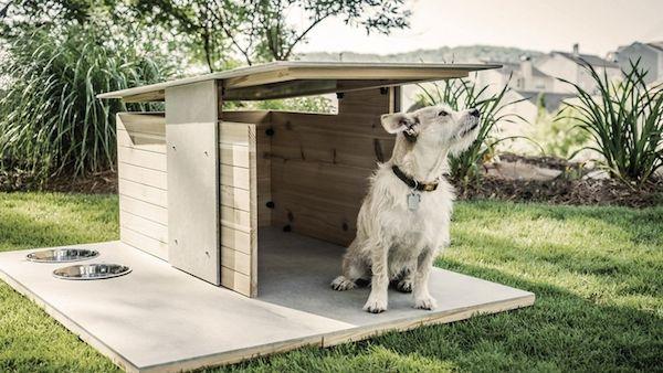 Modern dog houses modern dog house for Big modern dog house