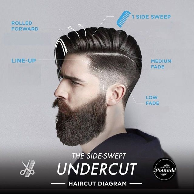 Modern Haircut Diagrams