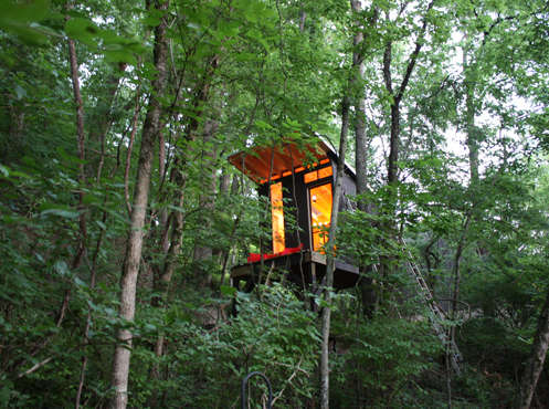 Contemporary Treetop Abodes