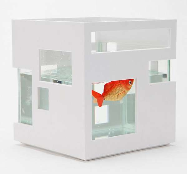 Funky Fish Abodes