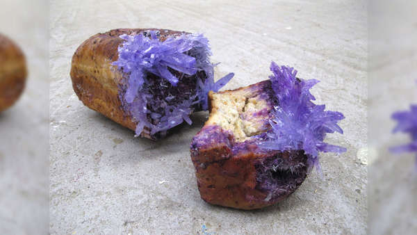 Moldy Bread