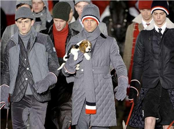 Pet-Friendly Fashion Shows