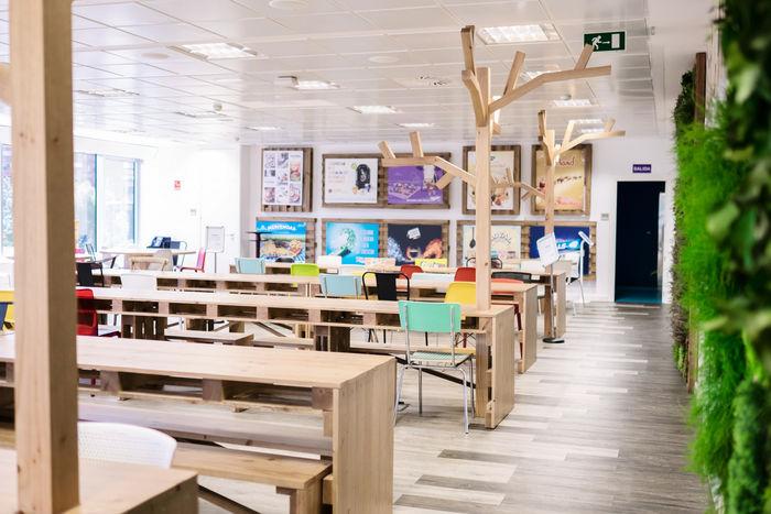 Wood-Clad Office Interiors