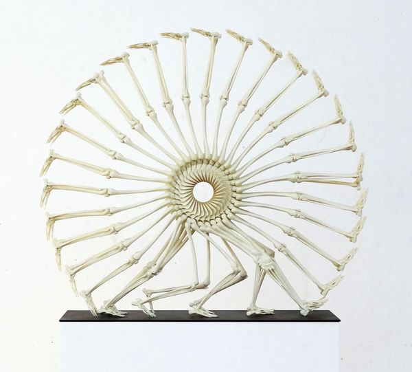 Surreal Skeletal Sculptures