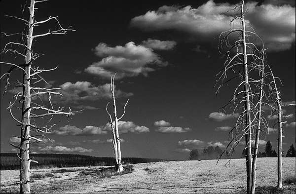 Lifeless Landscape Photography