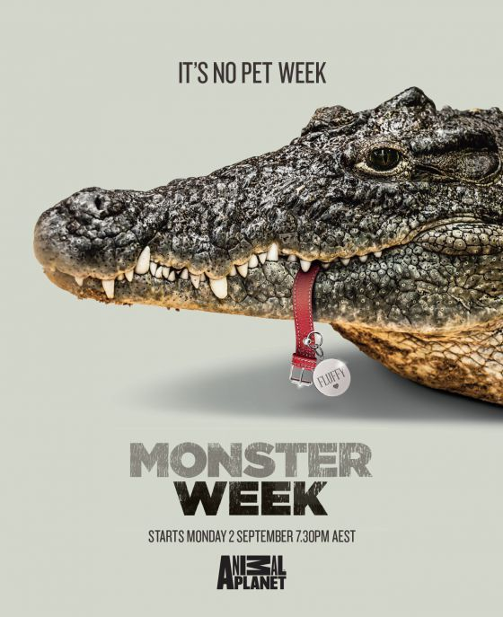 Pet-Devouring Animal Ads