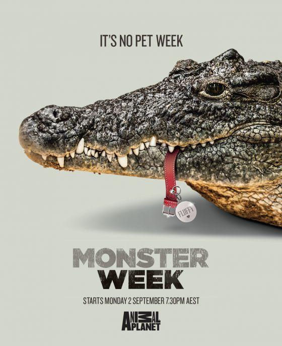 Pet-Devouring Animal Ads