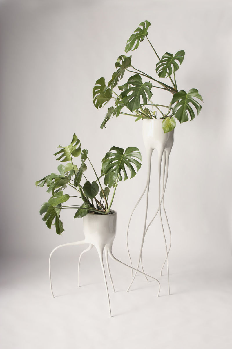 Terrestrial-Like Planters