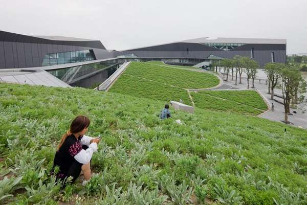 Undulated Green Headquarters