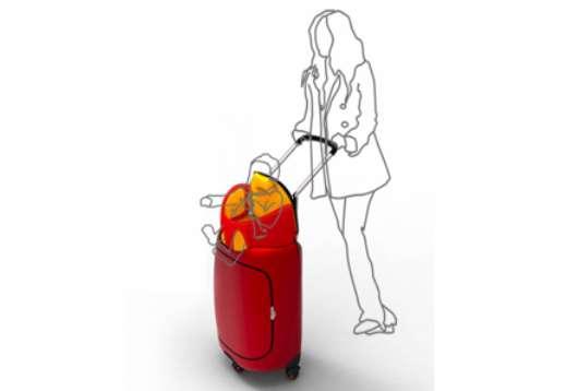 Traveling Tot Luggage