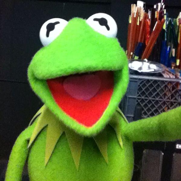 Hilarious Famous Puppet Selfies