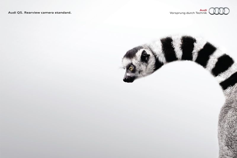 Mutated Animal Ads