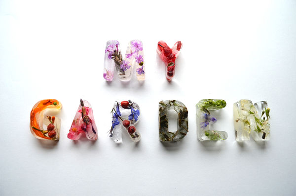 Iced Plant Typography
