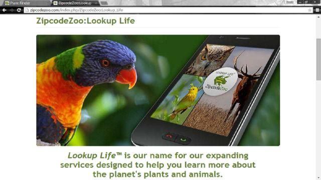 Species Identification Apps