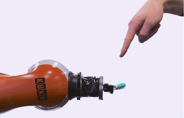 Pain-Sensing Robots