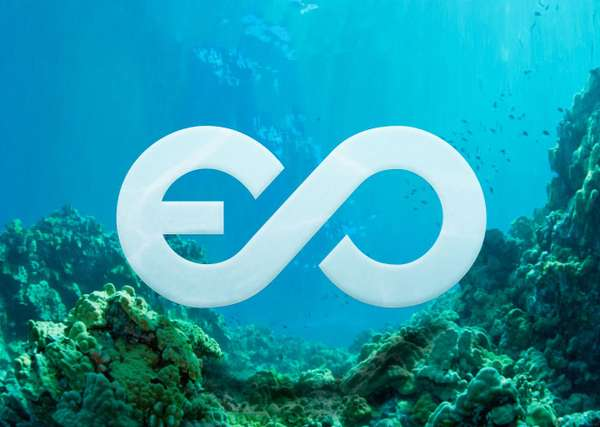 new ethical ocean website