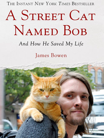 Street Cat Salvation Storybooks