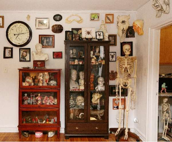 Eccentric Condo Exhibits New Yorker Creates Museum Of Oddities In His Own Apartment