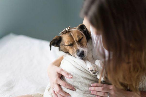 Newborn Canine Photography