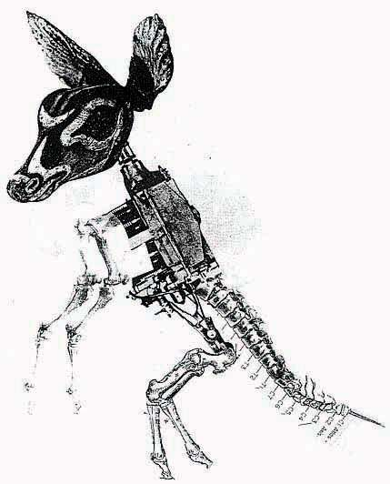 Machine-Animal Illustrations