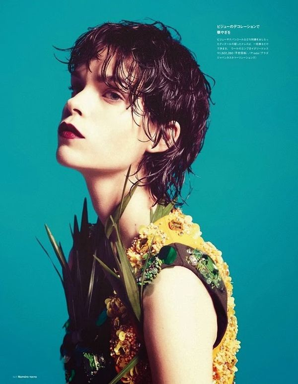 Drenched Botanical Editorials