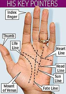 Presidential Palm Readings