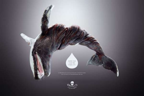 Wringed-Animal Campaigns