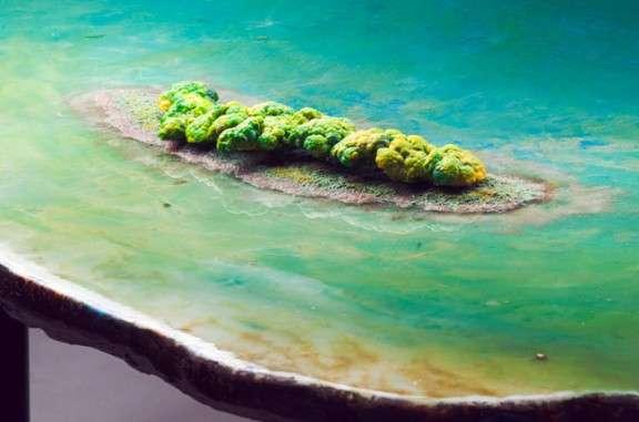Scenic Aquatic Furniture