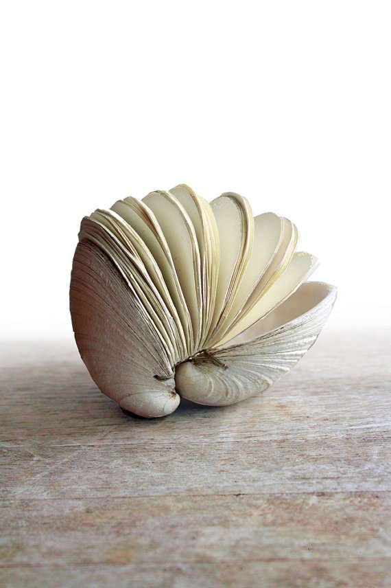 Shell-Containing Journals