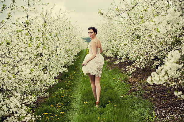 Floral Orchard Photography