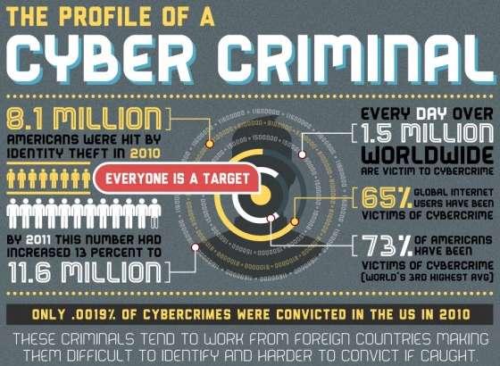 Cyber Criminal Profile Infographics