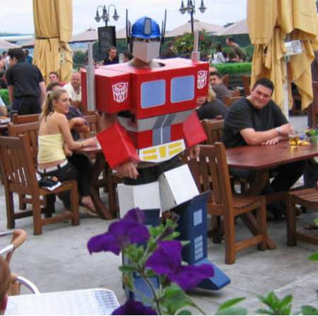 Cardboard Robot Disguises