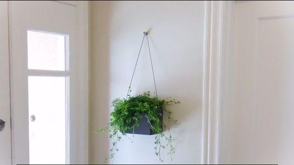 Minimalist Indoor Garden Kits