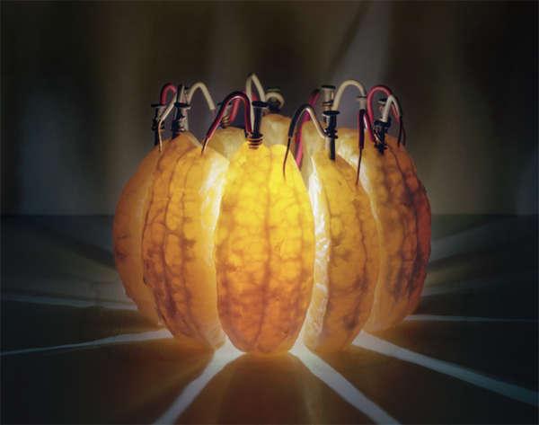 Fruit Energy Sources