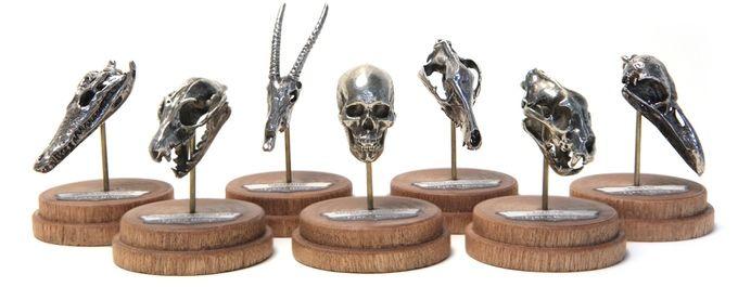 3D-Printed Animal Skulls