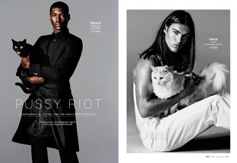 Feline Fanatic Editorials