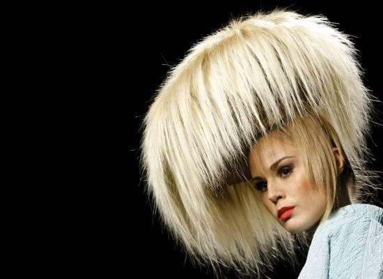 Wild Mushroom Hairdos