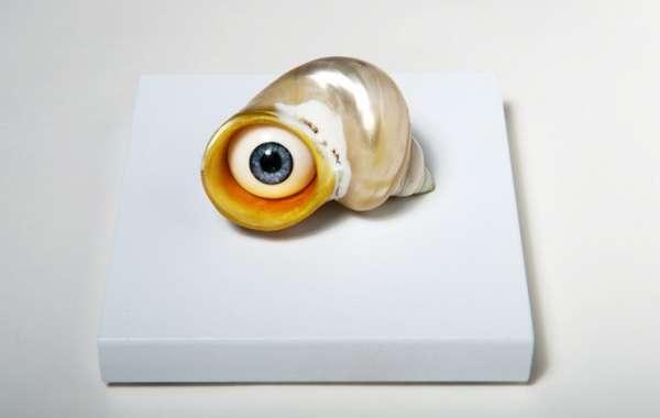Sentient Crustacean Art