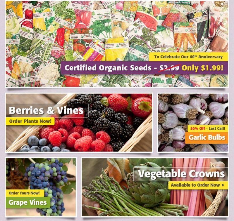 Web-Based Farmers Markets