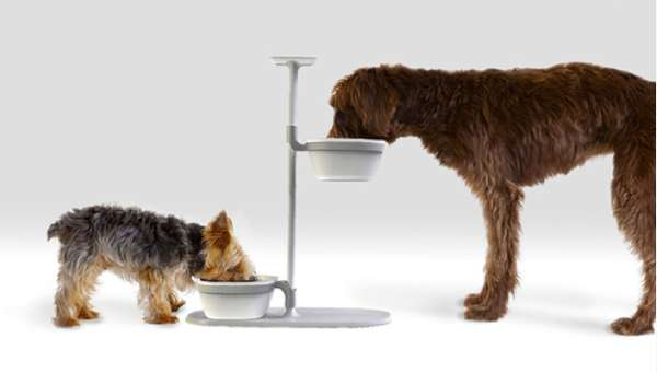 Pedestal Pet Bowl