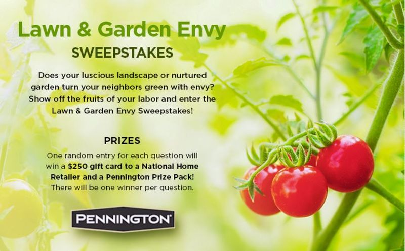 Photogenic Garden Contests
