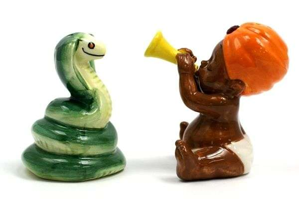 Snake Charmer Kitchen Accessories