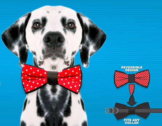 Sophisticated Pet Bow Ties