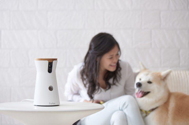 Treat-Dispensing Pet Cameras
