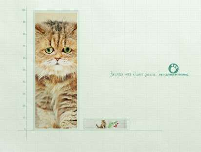 Sympathetic Cat Ads