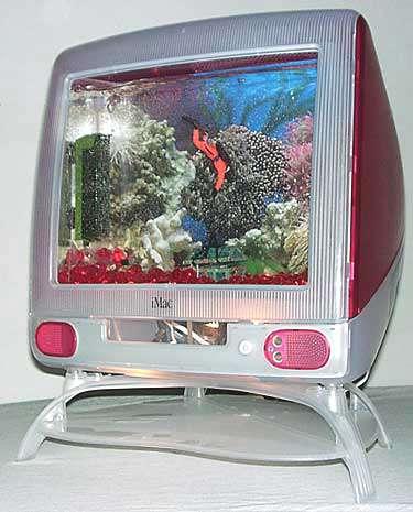 Pet Computer